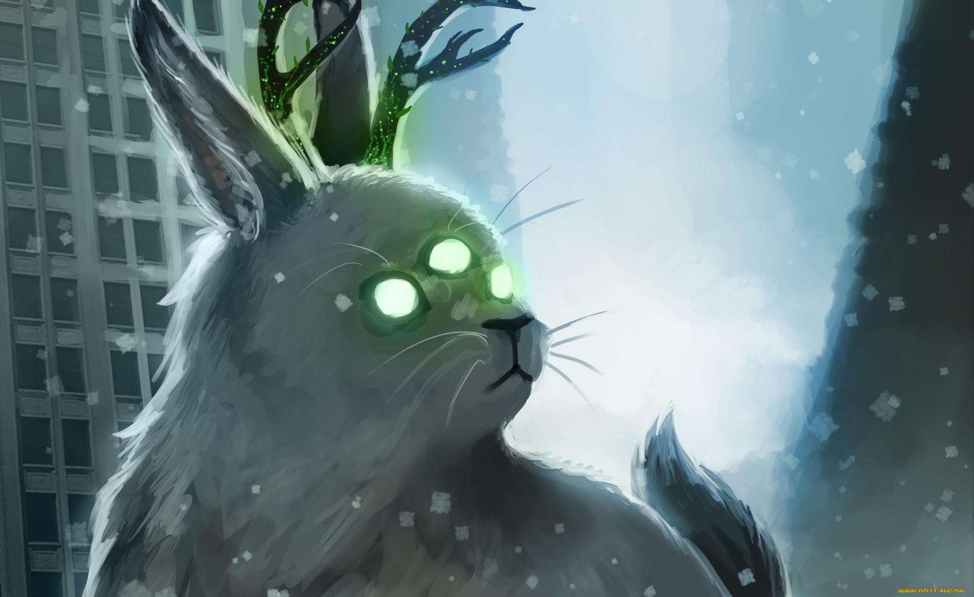 картинки коты апокалипсиса цены